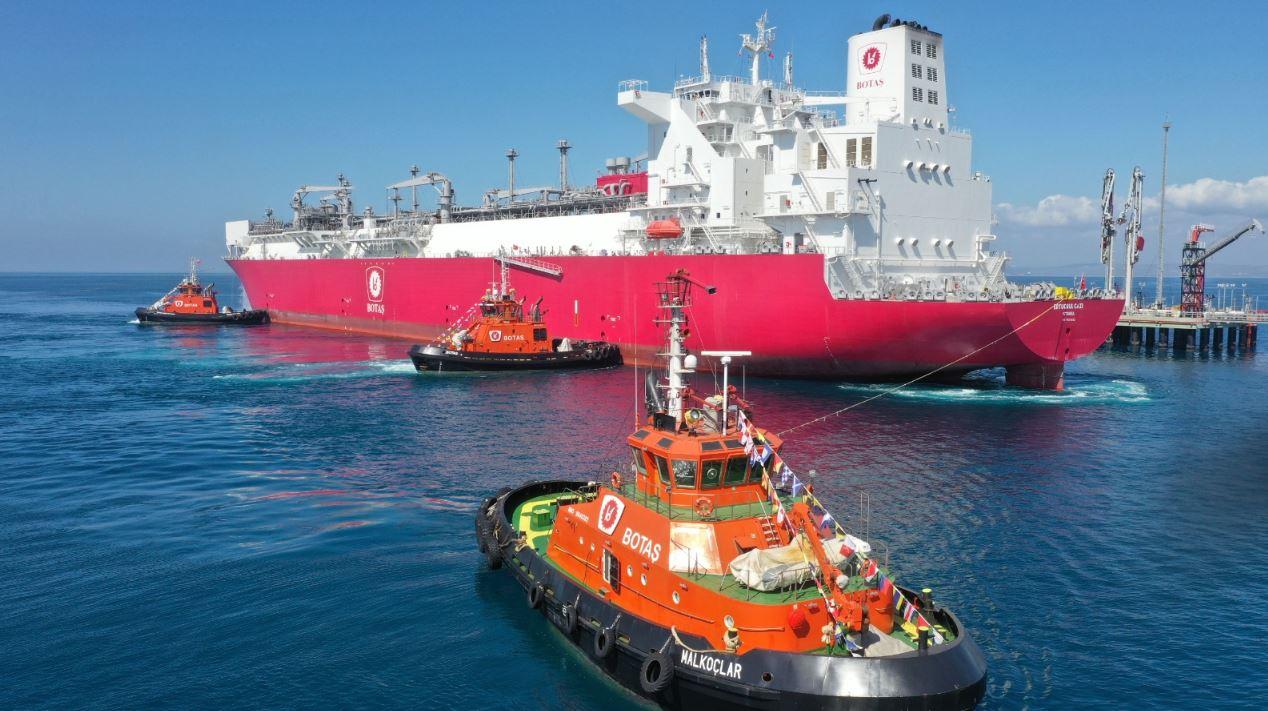 Turkish LNG imports nosedive